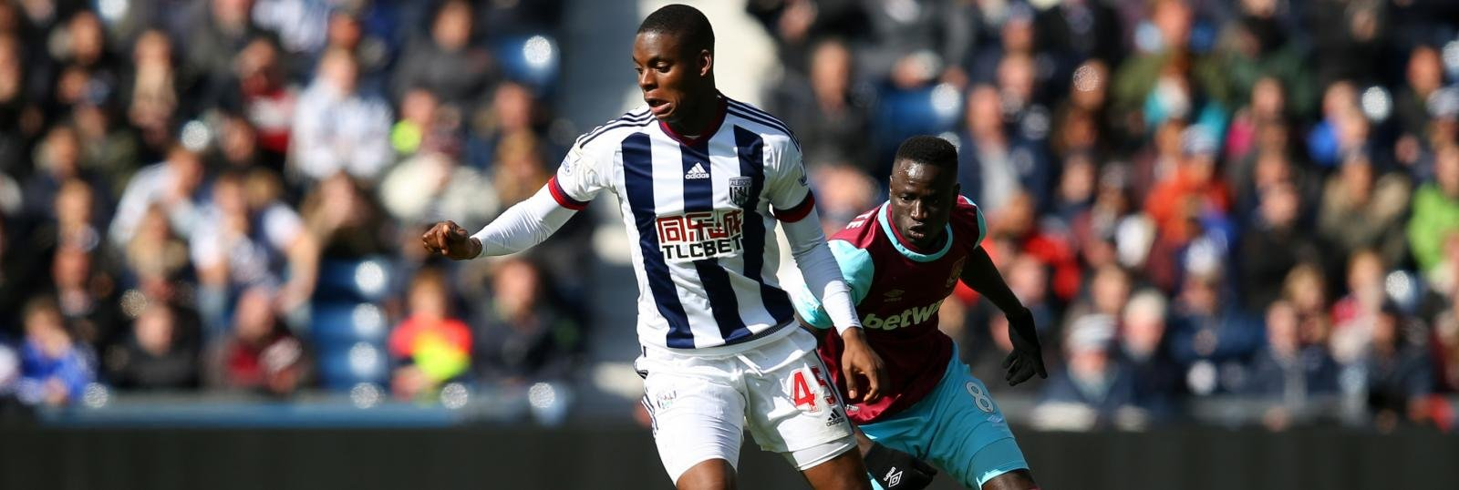 West Brom's bog standard transfer window gives Leko, Wilson and Field a chance to shine